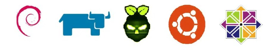 Raspberry PI OSes