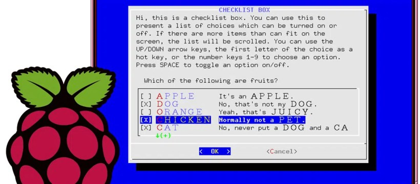 Raspberry PI dialog user interface featured image