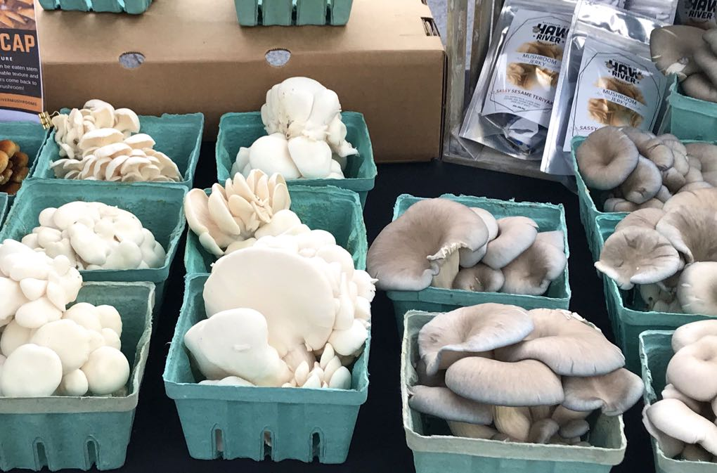 Photo of mushrooms at farmers market as example of the health benefits of mushrooms
