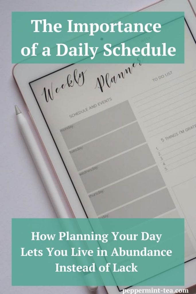 Photo of a weekly planner app on a tablet as an example of a daily schedule.