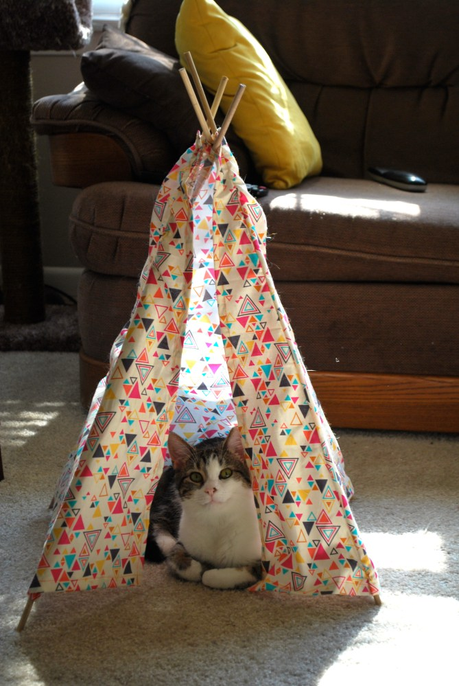 Cat Tepee (1/6)