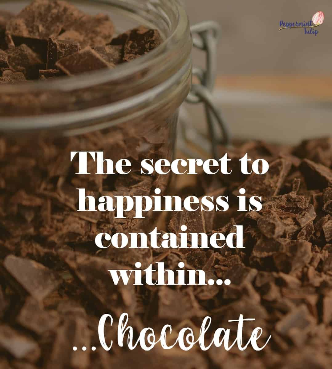 Chocolate | Organic Cocoa Blend