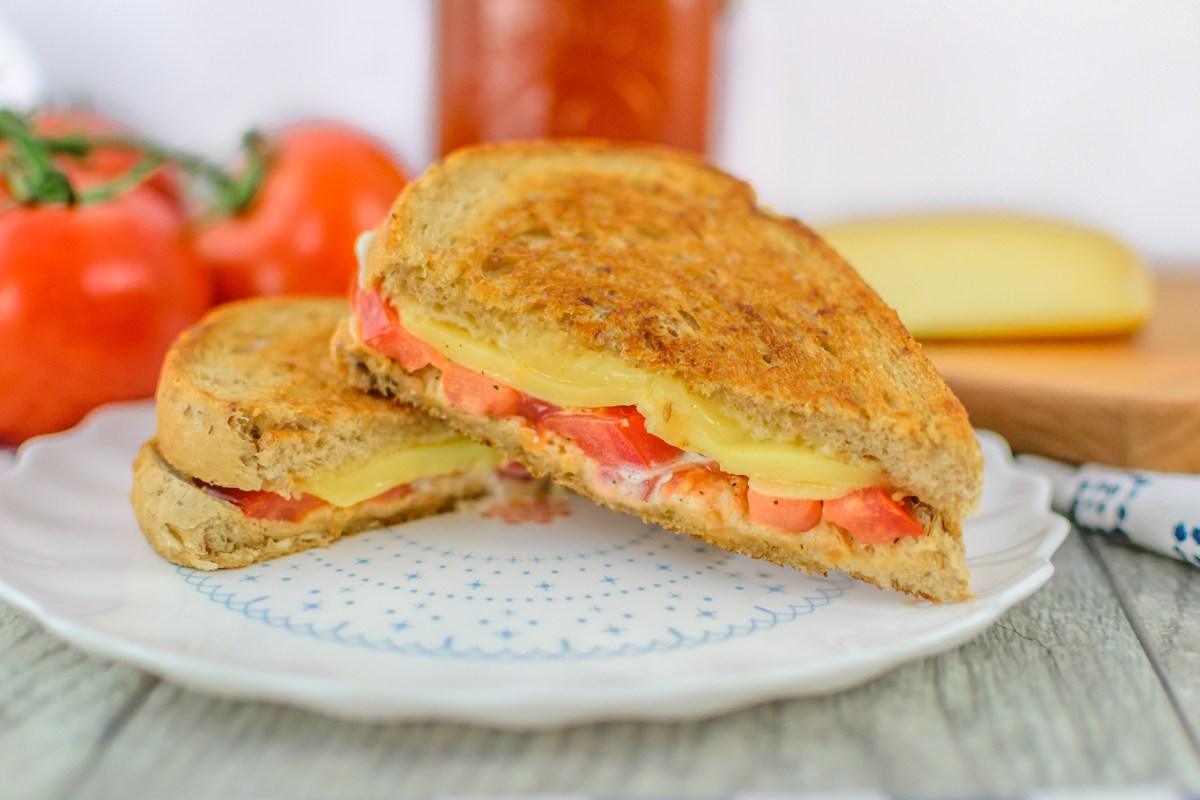 Toasted Tomato Cheese Sandwich