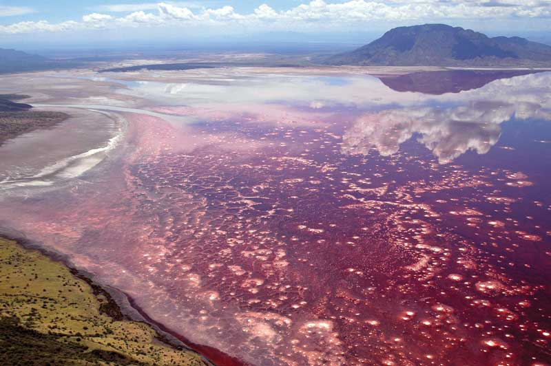 The Strangest Lakes and Seas in the World