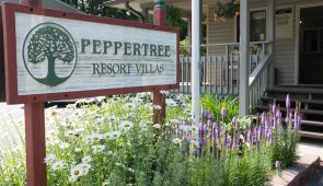 Peppertree Maggie Valley Policies