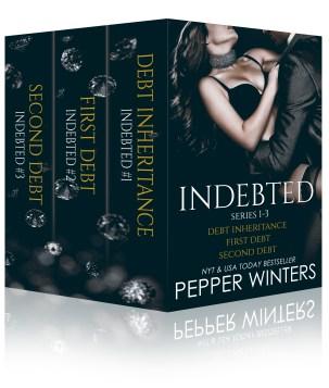 INDEBTED BK1-3 Box Set