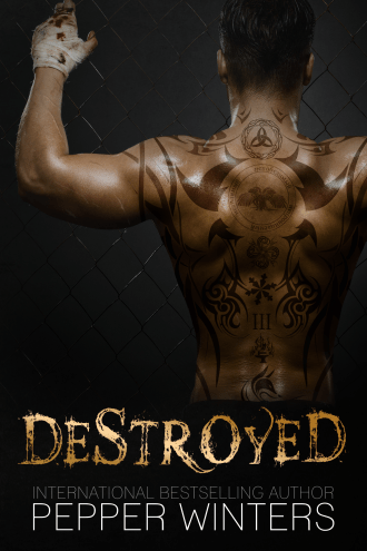 Destroyed E-Book Cover (2).png