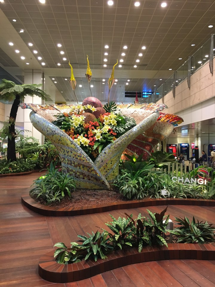 Layover at Changi Airport? THIS will have you covered!