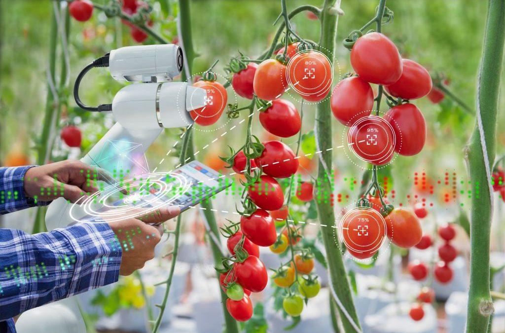 La FOODTECH : une solution pour un système alimentaire plus durable ?