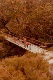 The bridge, below the Lake Catani dam wall.