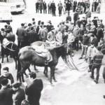Candelera 1972-2