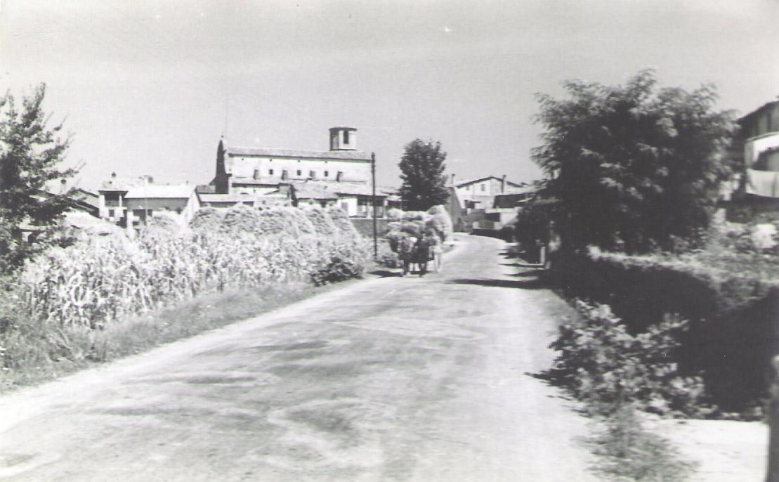 Perafita 1955