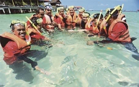 saving coral