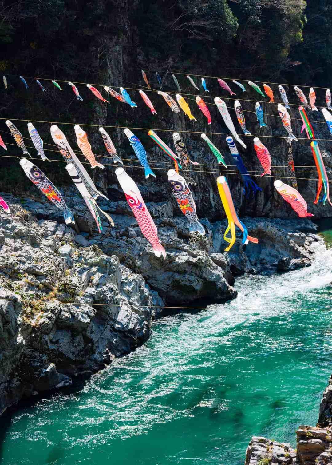 koinobori strung over the yoshino river