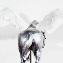 Pegaz, 2003., aluminij
