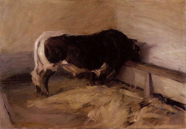 Bik, 1911.