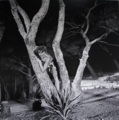 Marin Držić - Plakir, Dubrovnik, 1954.