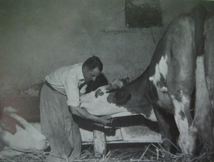 Portret Ivana Generalića - Tošo Dabac, 1958.