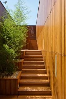 Vrt saune, foto: Tamas Bujnovszky
