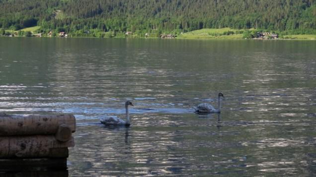 Halštatsko jezero