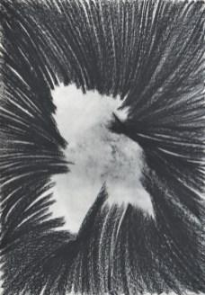 Rupa; pastel, 70 x 100 cm