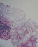 Božuri, studija 5 - ulje na platnu, 100x80cm, 2020
