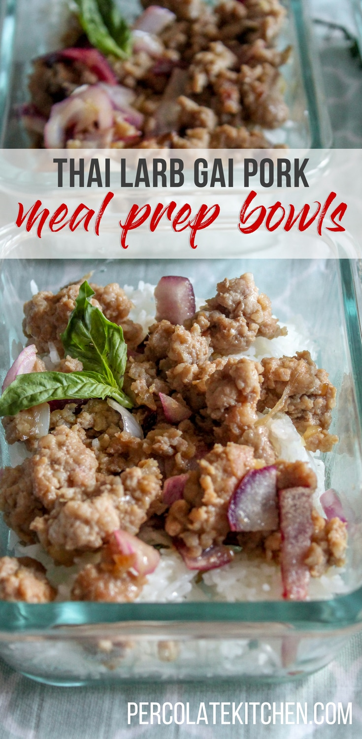 These rice bowls are a great make-ahead work lunch idea! I was looking for meal prep recipes for beginners and I love how tasty and easy these are. They're a good work lunch either hot or cold, too.
