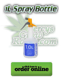 1l spray bottle for pesticides, Cannabis growers forum & community, How to grow cannabis, how to grow weed, a step by step guide to growing weed, cannabis growers forum, need help with sick plant, what's wrong with my cannabis plant, percys Grow Room, the Grow Room, percys Grow Guides, we'd growing forum, weed growers community, how to grow weed in coco, when is my cannabis plant ready for harvest, how to feed my cannabis plant, beginners guide to growing weed, how to grow weed for personal use, cannabis plant deficiency, how to germinate cannabis seeds, where to buy cannabis seeds, best weed growers website