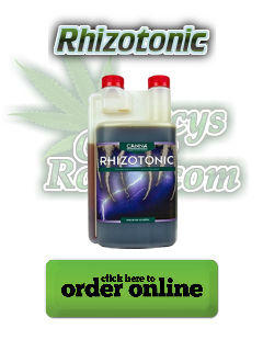 Rhizotonic, Canna, root enzymes, Cannabis growers forum & community, How to grow cannabis, how to grow weed, a step by step guide to growing weed, cannabis growers forum, need help with sick plant, what's wrong with my cannabis plant, percy's Grow Room, the Grow Room, Cannabis Grow Guides, weed growing forum, weed growers community, how to grow weed in coco, when is my cannabis plant ready for harvest, how to feed my cannabis plant, beginners guide to growing weed, how to grow weed for personal use, cannabis plant deficiency, how to germinate cannabis seeds, where to buy cannabis seeds, best weed growers website, Learn to grow cannabis, is it easy to grow weed