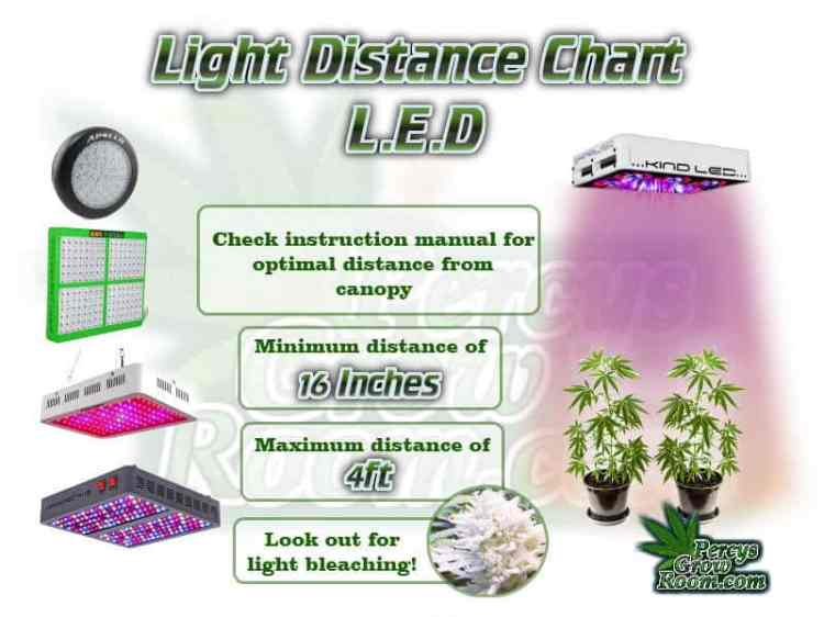 how close should led light be to a plant, beginners guide to growing weed, how to grow weed for personal use, cannabis plant deficiency, how to germinate cannabis seeds, where to buy cannabis seeds, best weed growers website, Cannabis Growers forum, weed growers forum, How to grow legal cannabis, a step by step guide to growing weed, cannabis growing guide, tips for marijuana growers, growing cannabis plants for the first time, marijuana growers forum, marijuana growing tips, cannabis plant problems, cannabis plant help, marijuana growing expert advice