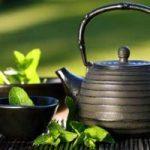 ¿El té verde ayuda a adelgazar? 10 beneficios del té verde