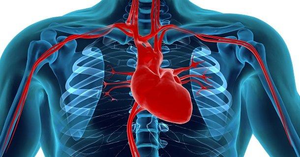 10 Alimentos Que Fazem Bem ao Coração e Outros que Fazem Mal