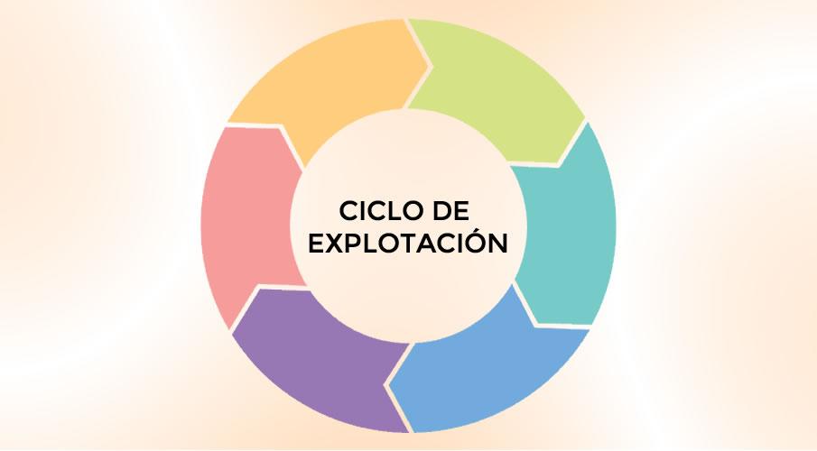 Ciclo de Explotación