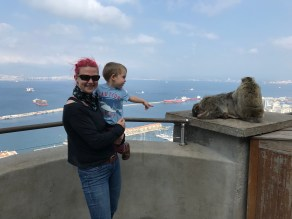 Monkey-spotting overlooking Gibraltar Bay