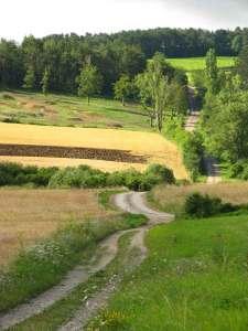 ścieżka Francigeny