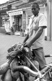 Coconut seller, Galle Fort