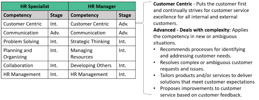 Example Competency Profile