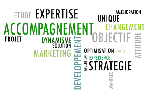 expertise-consulting-marketing