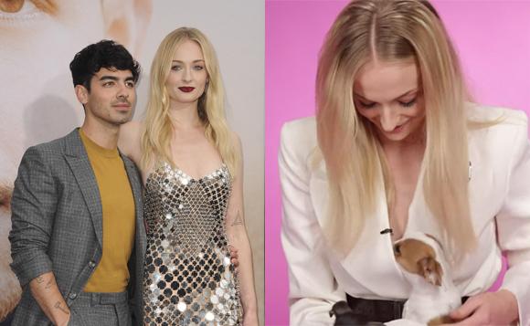 Sophie Turner Puppy Interview Joe Jonas