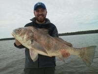 Michael's Apalachicola Bay Black Drum