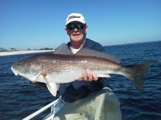 Big Redfish Panama City Beach 2
