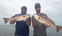 Dan and Nathan's Cape San Blas redfish double 3