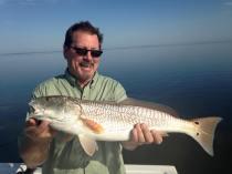 Kent's Redfish