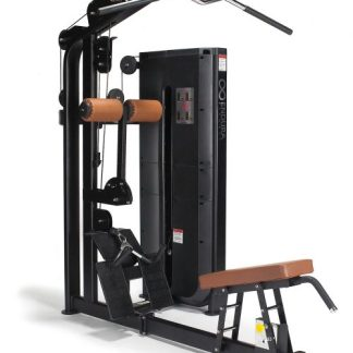 Endura Fitness PRO DUAL Lat Pulldown & Low Row