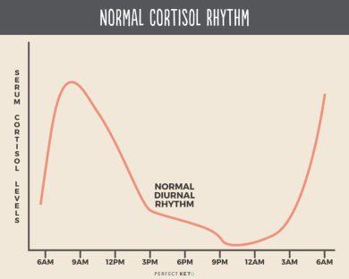 Resultado de imagen de cortisol during night