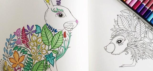 """Ce ziceţi de un desen ….. """"prin meditatie""""?"""