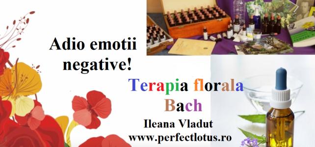 """Atelier practic  """"Adio emotii negative cu remedii florale Bach"""""""