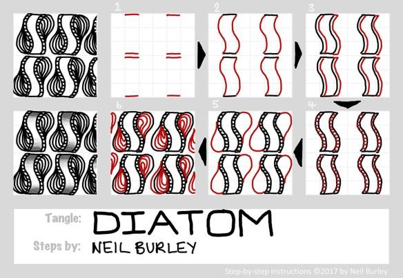 Diatom tangle pattern