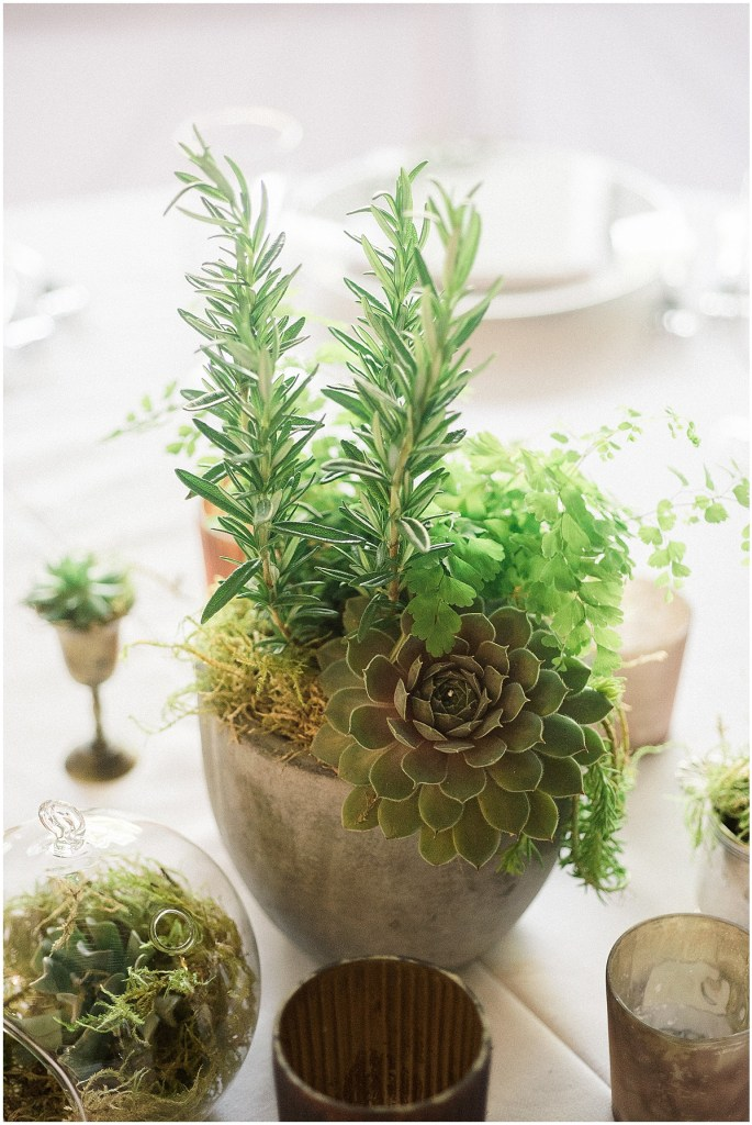 Succulents in stone vase, Fremont Foundry wedding in Seattle, Wedding Planning and Design by Perfectly Posh Events, Seattle and Portland Wedding Planner, Photo by Alexandra Grace Photography, Flowers by Studio 3 Floral Design