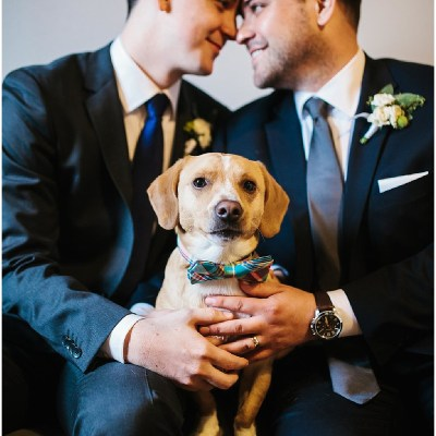 Two grooms in navy suits look lovingly at each other while their dog sits between them, same sex wedding, Sodo Park wedding, Seattle wedding coordinator, Perfectly Posh Events, Photo by Melissa Kilner Photography